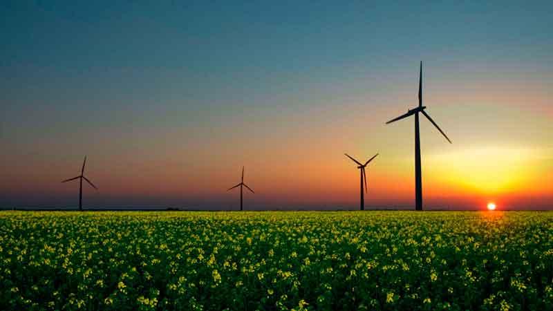España es el séptimo productor mundial de energía eólica y el octavo en solar